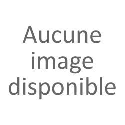 PC Portable HP 255 G7 2D318EA (SILVER)